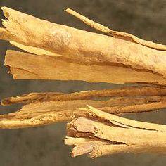 Exporter Of Cinnamon Bark Oils Buy Online at wholesale prices Botonical Name : Cinnamomum verum CAS # : 8015-91-6 Country of Origin : Ind...Pric: $ 6.25