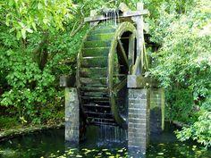 water wheel in trentham memorial park, hutt valley