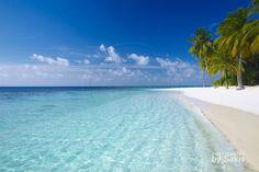 ... Maldives Une plage paradisiaque comme on en trouve sur l'ensemble de l'archipel ...