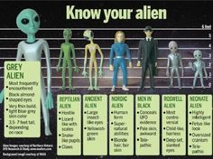Know your Aliens, chart of the verified and known types of Aliens or ET's that have been documented on Earth, via the Nordic Aliens Types Of Aliens, Aliens And Ufos, Ancient Aliens, Ancient History, European History, American History, Paranormal, Nordic Aliens, Terre Plate