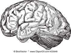 Royalty-Free (RF) Clipart Illustration of a Black And White Human Anatomical Brain Drawing - 3