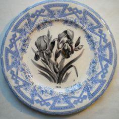 assiette - porcelaine opaque - iris - Art Nouveau - Grigny Rhône Signée (D.M. et Cie).