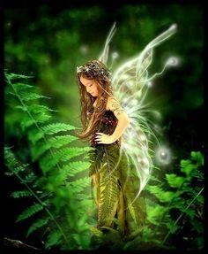 ✿ ܓ ✿ fairy ✿ ܓ ✿
