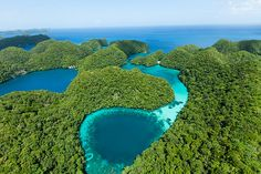 Blue hole surrounded by lush tropical rock islands, Palau by ippei & janine naoi Source: Flickr