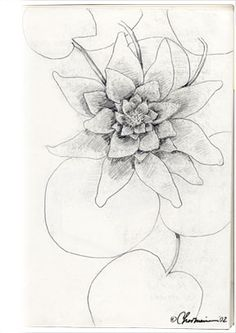 flowers draw - Pesquisa Google