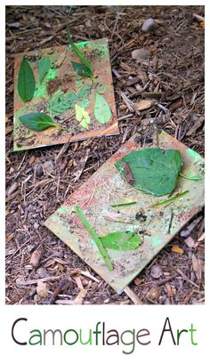 Perfect for learning about how animals use camouflage to protect themselves from predators! | Fireflies and Mud Pies