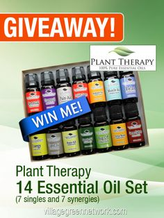 Win a Plant Therapy Essential Oil Set — $55 Value  #giveaway #essentialoil  / http://villagegreennetwork.com/giveaway-plant-therapy-essential-oil-set-55-value/