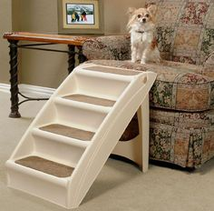 pet-stairs