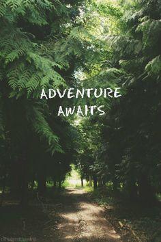 Quotes adventure awaits wanderlust Ideas for 2019 Adventure Awaits, Adventure Travel, Adventure Quotes Outdoor, Forest Adventure, Life Adventure, Nature Adventure, Wallpaper S8, Wallpaper Quotes, Cellphone Wallpaper