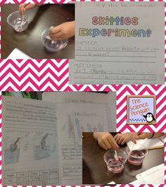 Skittles Experiment to introduce the scientific method