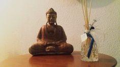 Dengo Anjo Turquesa compondo um espaço Zen