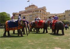 Elephant Polo – Match at Jaipur during Maharajas' Express Journey