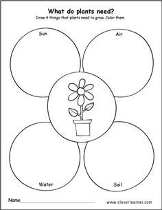 WHat plants need to grow draw and color worksheets Science Worksheets, Science Lessons, Worksheets For Kids, Science Activities, Preschool Garden, Preschool Crafts, 1st Grade Crafts, Plant Lessons, Colors
