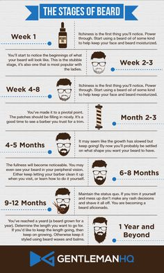 of Beard Growth Infographic from GentlemanHQ. Notice how vital beard oil . Stages of Beard Growth Infographic from GentlemanHQ. Notice how vital beard oil ., Stages of Beard Growth Infographic from GentlemanHQ. Notice how vital beard oil . Beard Growth Stages, Beard Growth Oil, Beard Styles For Men, Hair And Beard Styles, Beard Growing Tips, Patchy Beard, Beard Styles Patchy, Beard Tips, Beard Ideas