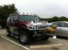 Crazy And Hilarious Cars 5