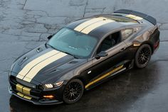 Shelby 2016 GT