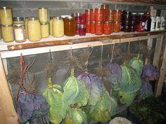 http://preppers101blog.files.wordpress.com/2012/08/food-put-up-in-root-cellar.jpg