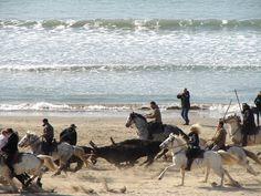 Abrivado des plages grau du roi mars2013
