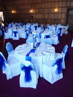 Royal Blue on white cotton chair covers at Mill Hall from Simply Bows and Chair Covers