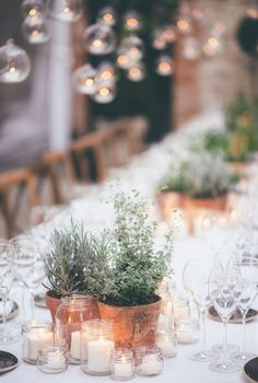 Candles and herbs! Presto the perfect, simplistic way to make sure your wedding table is romantic, relaxed and elegant. So easy and so affordable. The best part is that no flower died! dinner date Rustic Italian Table Decor Simple Wedding Decorations, Elegant Centerpieces, Simple Weddings, Rustic Weddings, Outdoor Weddings, Indian Weddings, Romantic Weddings, Herb Wedding Centerpieces, Italian Table Decorations