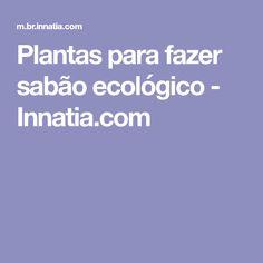 Plantas para fazer sabão ecológico - Innatia.com