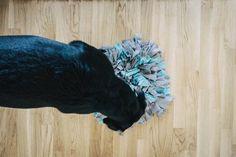 ➡ DIY Schnüffelteppich - ideale Auslastung für berufstätige Hundehalter - Flummi's Diary Shag Rug, Moose Art, Lion Sculpture, Statue, Diy, Animals, Tricks, German, Bouncy Ball