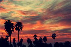 I can't wait to spend some quality time with this beautiful sky this summer! #Venice #Beach