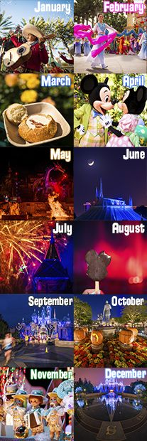 Planning a trip to Disneyland and trying to determine the best month to visit? We analyze crowds, weather, seasonal events, park hours, and other factors t