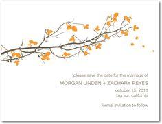 Save the dates + invitations