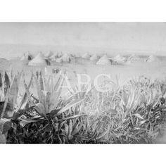 CAMPAMENTO ESPAÑOL EN NADOR DE LARACHE. FOTO CUEVAS.1911: Descarga y compra fotografías históricas en | abcfoto.abc.es