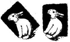 Kacsa-nyúl