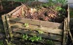 Compost and Manure information. Composting and fertilizer for your garden. Tips and information on how to grow a beautiful garden with good compost and manure. Using Organic matter the right way.
