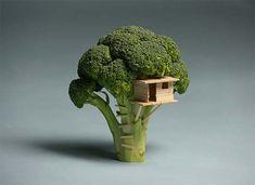 a broccoli treehouse