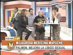 Salfate cuenta los secretos de la medicina mapuche