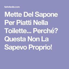 Mette Del Sapone Per Piatti Nella Toilette... Perché? Questa Non La Sapevo Proprio!