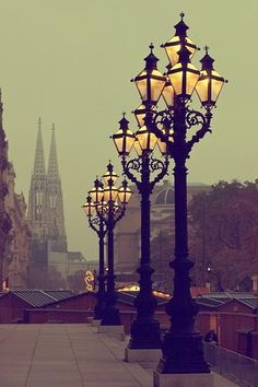 Vienna - How beautiful! What's funny is I took a pic of those lamp posts while I was there! Lol