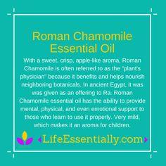 #RomanChamomile #essentialoil #lifeessentially #ameo
