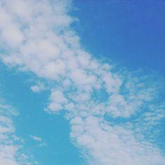 空。 珍品です(^w^)