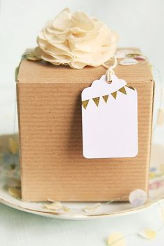 neutral pretty package