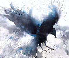 Flying Solo- Flying Solo by Sarah Yeoman Watercolor ~ 22 x 25 - Crow Art, Raven Art, Bird Art, Watercolor Bird, Watercolor Animals, Watercolor Paintings, Nicolas Vanier, Rabe Tattoo, Crow Painting