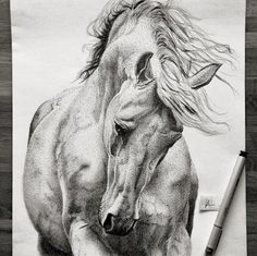 She Draws Dots On Paper For Over 70 Hours. When The Camera Pans Out, I'm In Awe