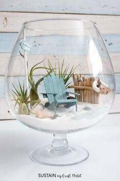 DIY Beachy Air Plant Terrarium