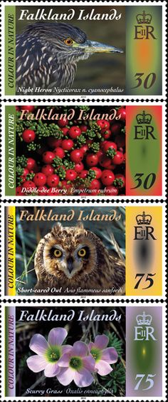 Colour in Nature stamps from (Malvinas)Falkland Islands Postage Stamp Collection, Old Stamps, Postage Stamp Art, Rare Birds, Flower Stamp, Small Art, Stamp Collecting, My Stamp, Pin Collection