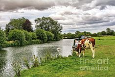 Thames Path, Long Distance, Beverly Hills, Paths, Trail, Instagram Images, Scene, Boat, River