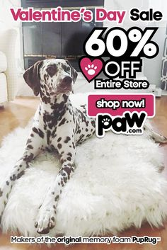 The PupRug orthopedic dog bed doubles as a stylish rug runner & is designed for both you & your pet to enjoy. Faux Fur & Memory Foam combine for ultimate luxury comfort Cute Baby Animals, Animals And Pets, Diy Dog Bed, Dog Beds, Dancing Baby, Orthopedic Dog Bed, Chihuahua Dogs, Puppies, Dog Jacket