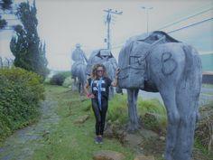 Mount Rushmore, Elephant, Mountains, Nature, Animals, City, Naturaleza, Animales, Animaux