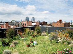 1: 174 Grand, Brooklyn New York | Peek Inside 8 Of The World's Greenest Homes | Co.Design: business + innovation + design