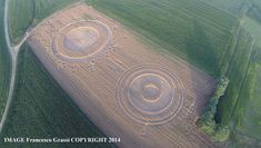 Crop Circle at Marocchi (Poirino), Italy. Reported 21st June  2014