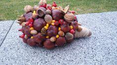 Podzimní ježek