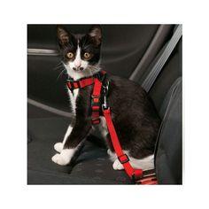 Karlie Flamingo Auto-Sicherheitsgeschirr für Katzen